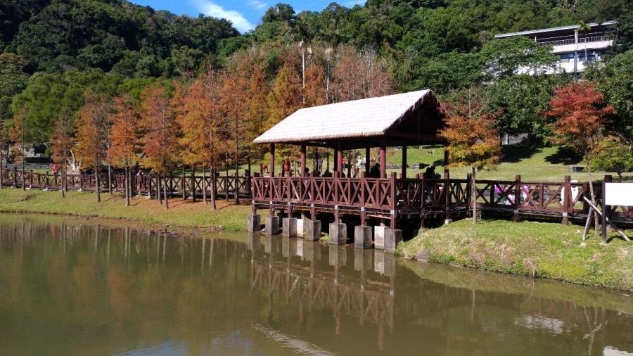 拍起來很厲害的地方,但實際上就是一個小片羽落松的外雙溪原住民主題公園。 #親子旅遊 #羽落松