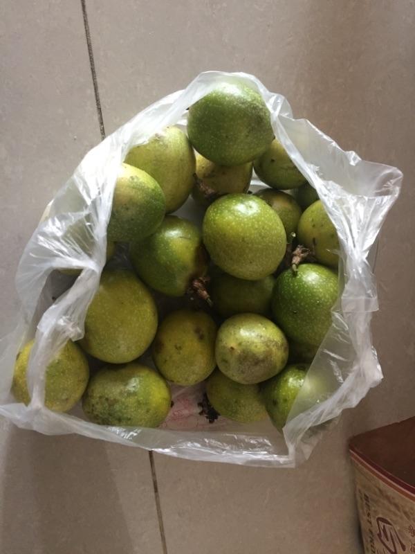 省錢秘訣就是常常回婆家陪陪老人家,然後一起去田裏採菜和水果,這樣就可以省下不少菜錢和水果錢又可以增進感情! #省錢