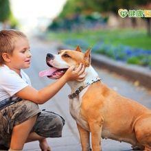 所有的狗都可能咬人!教孩子如何正確與狗狗相處?