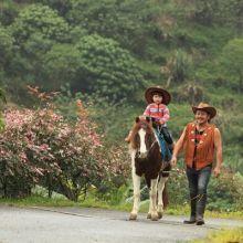 花蓮騎馬逛山寨民宿,農場探動物,賞珍奇鳥禽