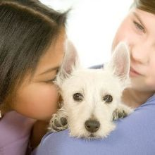 和狗狗一起玩 小寶貝更健康