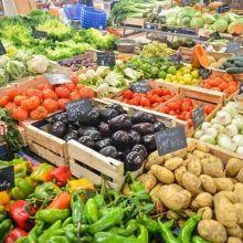 想吃當季食物?先看12月份時令食物整理表