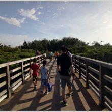 |新竹景點|國寶級的生態教室。動植物資源豐富的__紅樹林遊憩區