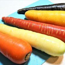 【VDS活力東勢五彩胡蘿蔔】一次吃到五色蔬果|甜甜脆脆孩子好喜歡|有身分證的胡蘿蔔