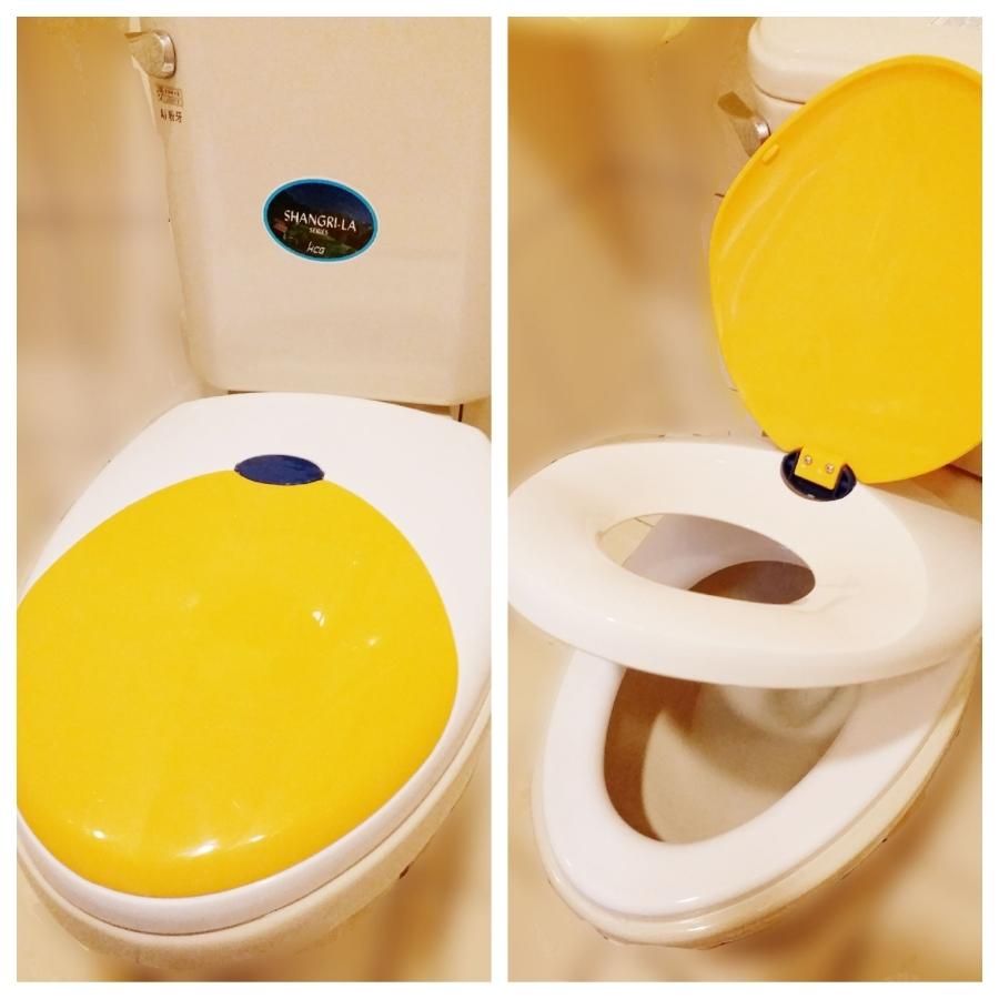 【育兒分享】子母式馬桶蓋(安裝DIY):孩子,我們一起邁向戒尿布之路吧!