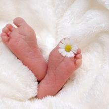 我的巴掌寶寶 一生的牽掛與責任
