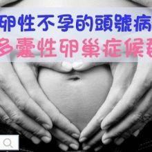 了解排卵性不孕的頭號病症─多囊性卵巢症候群