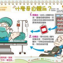 手術輸血的選擇  自體血VS異體血