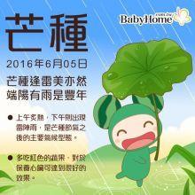 【節氣特輯】呷粽子慶端午,聰明吃更健康-芒種
