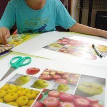 這不是蘋果?這是????一起來發揮孩子的想像力吧~