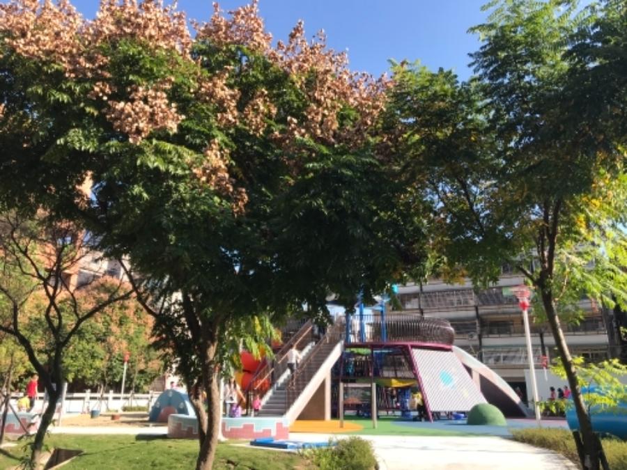 樹林東昇里特色公園