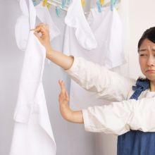 衣物清洗後沒有異味的關鍵:洗衣精能否有效抗菌!