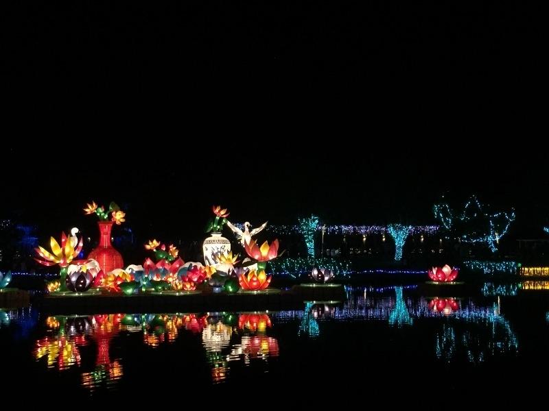 初四趴趴走~彰化溪洲費茲洛公園(免費入園) 白天賞花、夜晚賞花燈。 #親子旅遊