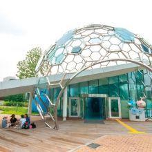 首爾也有愛斯基摩人冰屋?到阿利水展覽館一探究竟