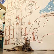 親子到摸摸貓咖啡館看貓咪、畫禪繞畫、玩貓疊疊樂!