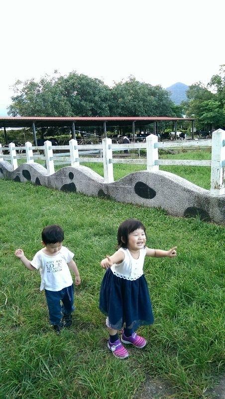 因為兩姊弟平常打打鬧鬧、精力旺盛, 所以暑假期間, 我就為他們安排了許多戶外活動體驗。 一來,不但可以認識生態環境, 二來,可以有運動跑跳的好機會。 當然😃最重要的是, 可以讓小朋友們留下快快樂樂的暑假回憶! #暑假生活 #大自然生態體驗 #游泳體驗 #農場體驗
