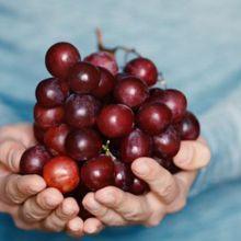 葡萄:紫色補血氣、黑色消疲勞