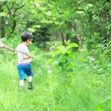 有多久沒有放下3C與孩子走進自然?運用身體5感一起玩遊戲