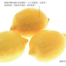 油性皮膚有救啦!檸檬美容7招