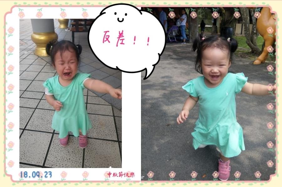 【育兒馬拉松】DAY2-六福村
