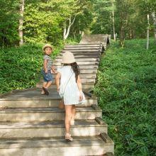 歡慶雙十國慶  當日暢遊13處國家森林遊樂區門票半價