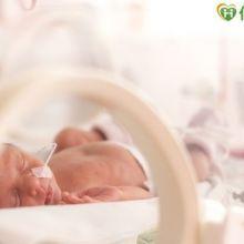 呼吸道融合病毒 早產兒頭號威脅