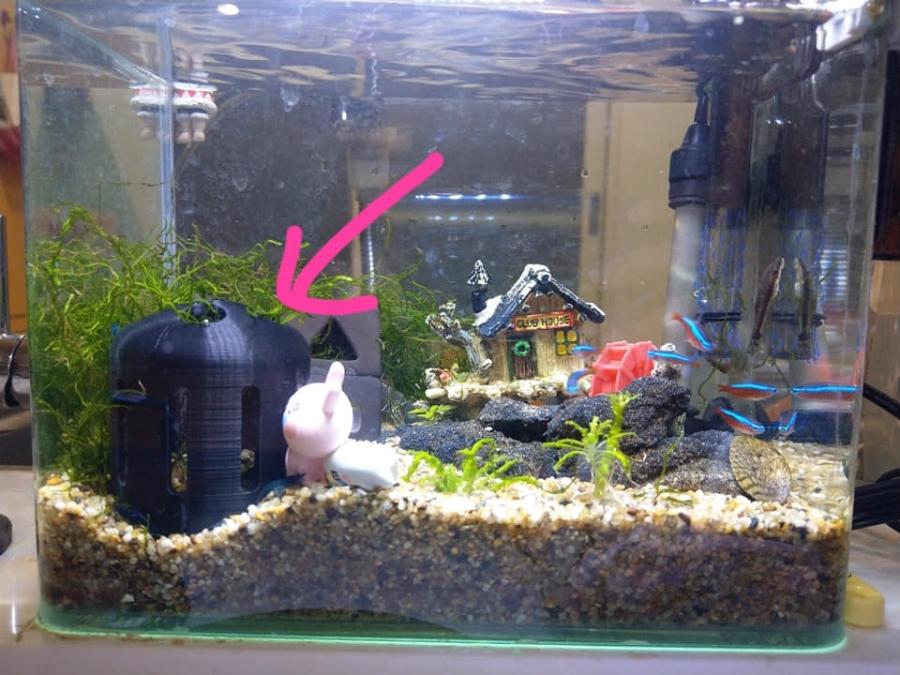 【謎樣的老公】蝦子的房子