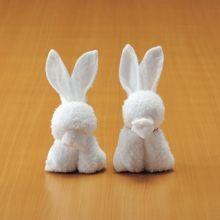 濕巾摺法~暴牙兔子和香腸嘴兔子