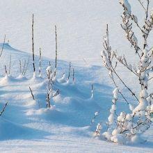 避免缺脂性皮膚炎上身 入冬更要注重保濕