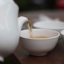 關於藥草茶的成分和作用