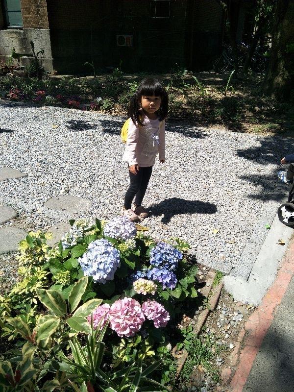 3/29藍天白雲。太陽好大😜 說去台大賞杜鵑花。結果杜鵑花已經凋謝了,哈。只能在台大走走。姐姐一直說為什麼要來這個地方。因為沒有她玩的。只能走走看看。 #親子旅遊