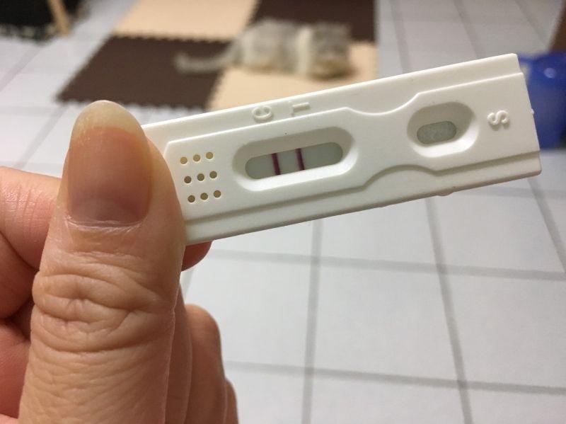 經歷一年了,終於在放下工作後 寶貝就來報到了 #懷孕 目前(27+3)