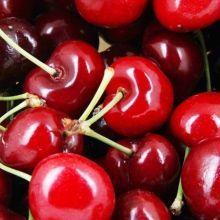多吃紅色食物如紅豆、櫻桃、葡萄、桑椹等,可以補血?